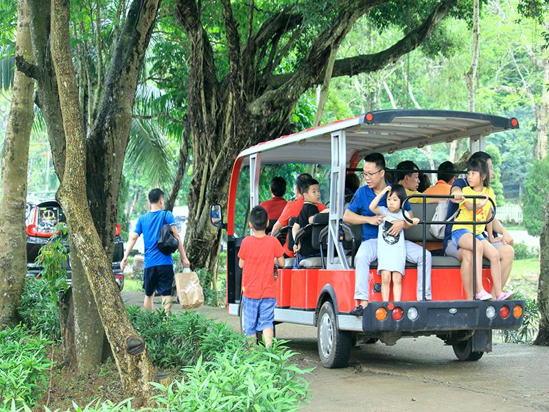 xe-dien-tham-quan-paragon-hill-resort-ba-vi