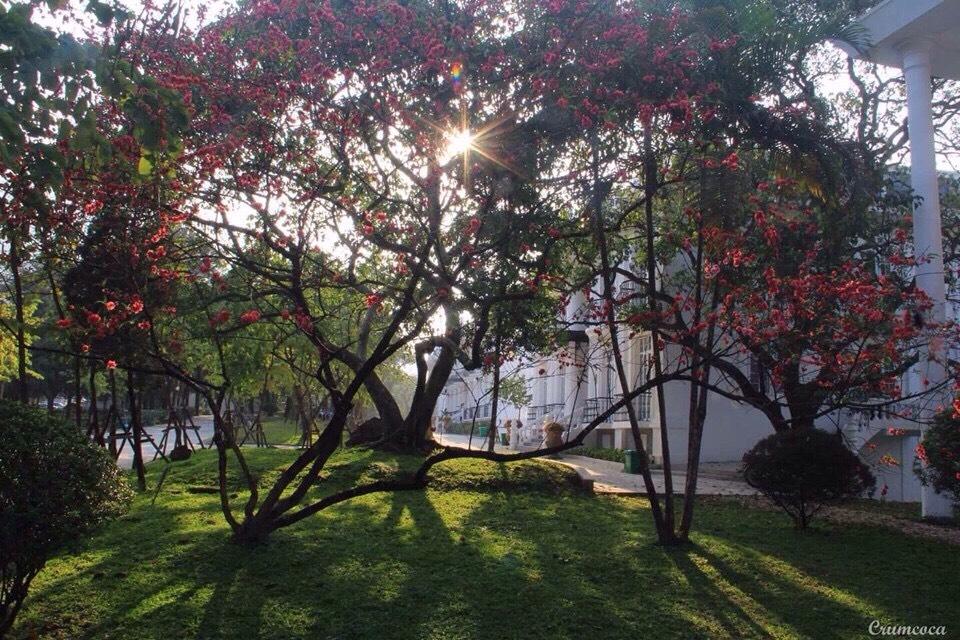 Ba-Vì-Resort-đẹp