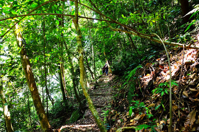 trekking-xuyen-rung-ba-vi